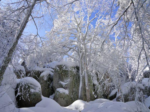 Furtwangen Guenterfelsen Winter 01 05072018