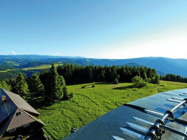 Tolle Aussicht auf den Schwarzwald vom Brendturm