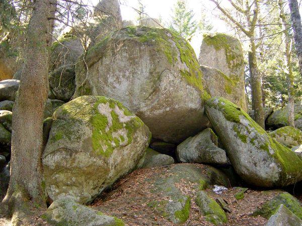 Günterfelsen - größte Felsblöcke des Mittleren Schwarzwalds