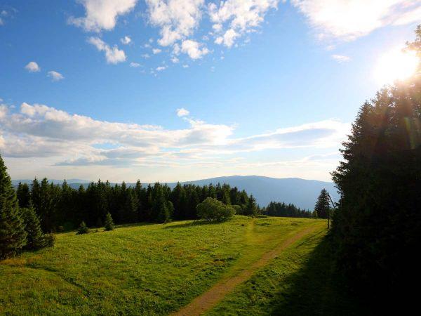 Schwarzwald pur! Genießen Sie die Aussicht und entdecken Sie die Schöhnheit der Natur.