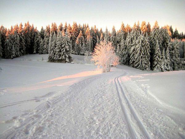 Der Sonnenuntergang färbt den weißen Schnee mit warmem Licht