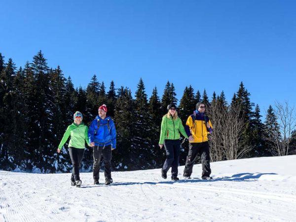 Schnee-Wanderung im Schwarzwald