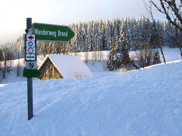 Wanderweg zum Brend - egal ob im Winter oder Sommer!