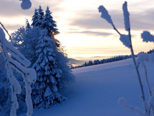 Sonnenuntergang im winterlichen Schwarzwald