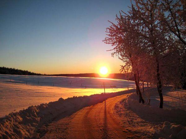 Die Abendsonne im winterlichen Schwarzwald
