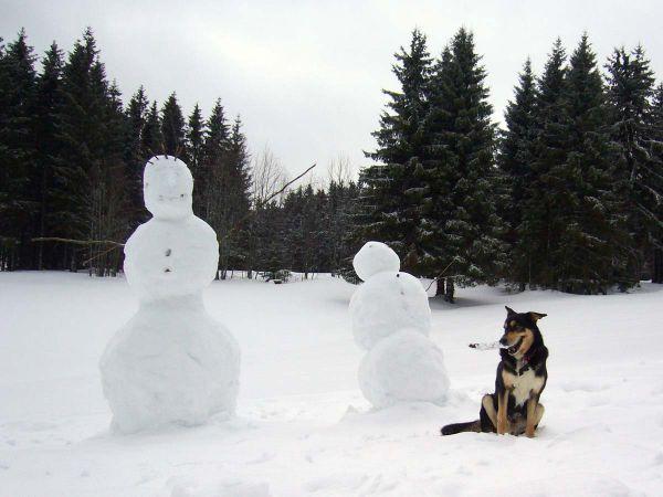 Im Winter kann man hier ganz tolle Schneemänner bauen